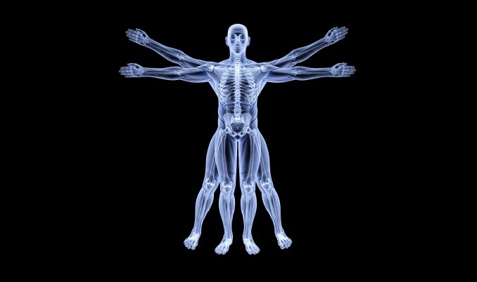 anatomy-scholarships