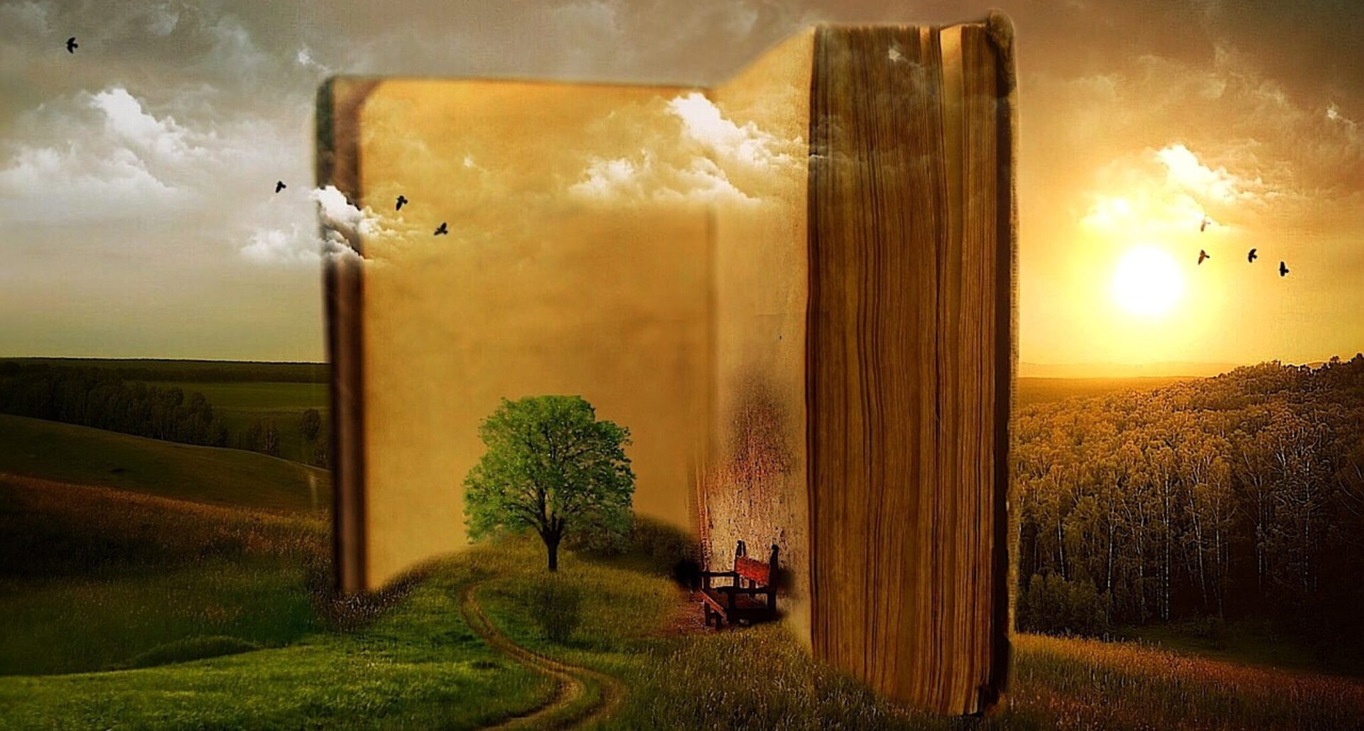 cropped-book-863418_1280.jpg