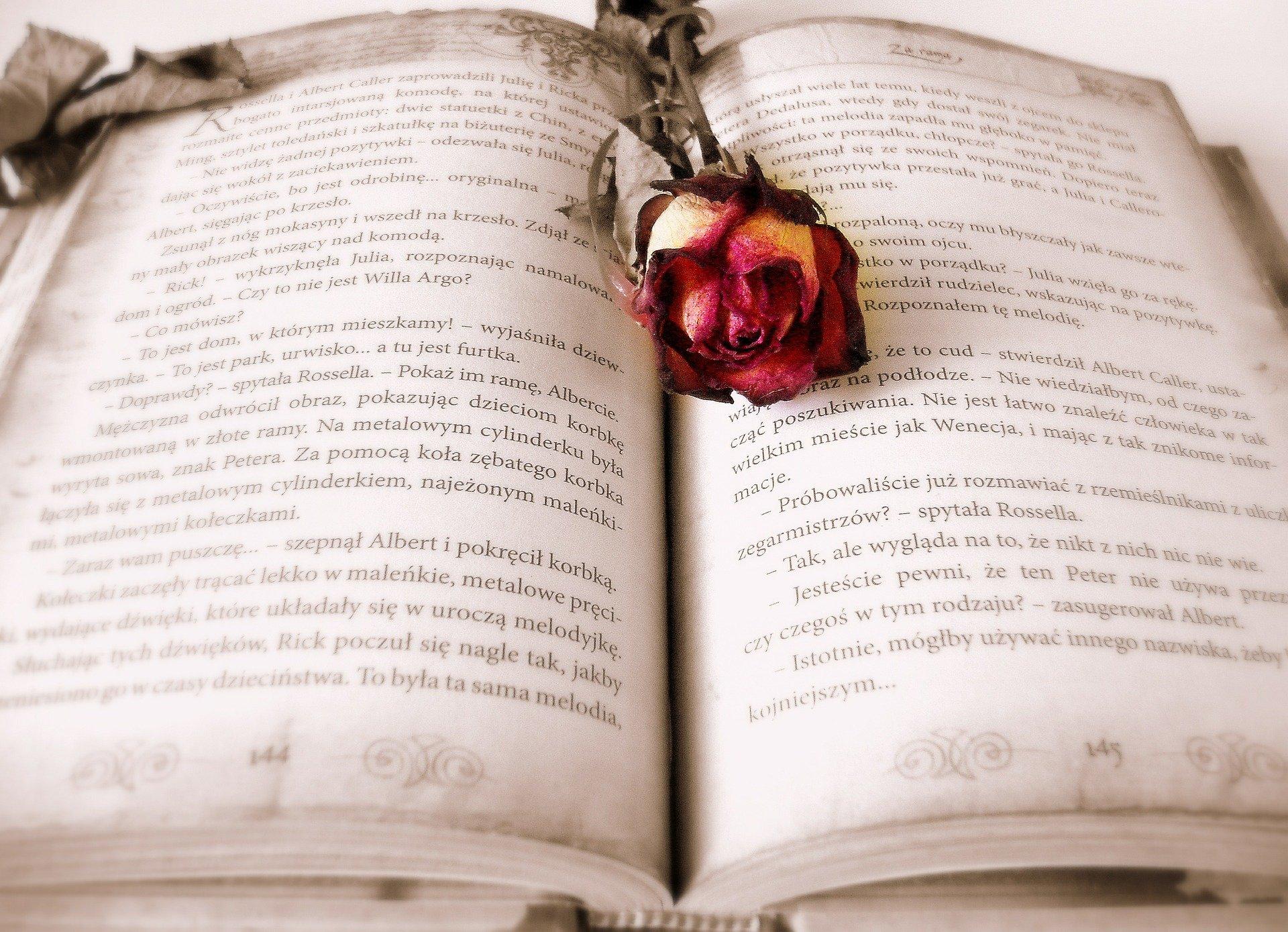 book-419589_1920
